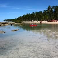 Praia dos Carneiros, uma das praias mais lindas do Brasil