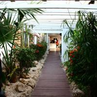O melhor restaurante de Aruba: Flying Fishbone