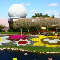 Disney: Epcot e Animal´s Kingdom